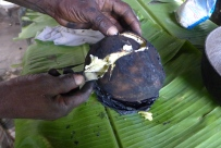 taking a slice out of the breadfruit