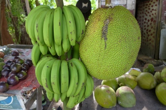 bananas and jack fruit