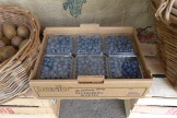 organic local blueberries